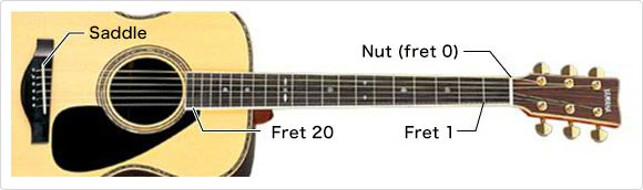 Moving one fret increases the pitch by one semitone